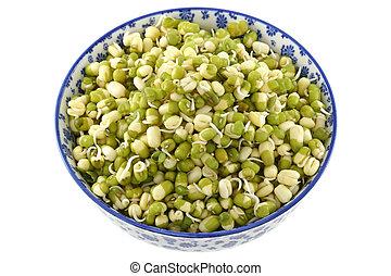 Soaked Mung Bean Green gram - A bowl of soaked Mung Bean...