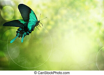 Natural bright background with butterfly
