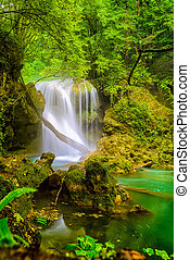 La Vaioaga Waterfall, Beusnita National Park, Romania