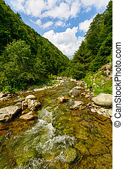beautiful mountain landscape with a river