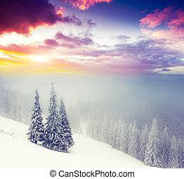 winter - Fantastic morning mountain landscape. Overcast...
