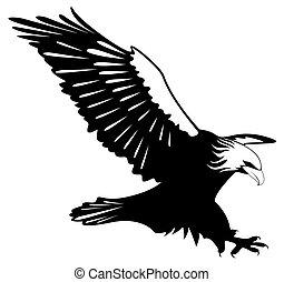 een, adelaar, Vleugels, open