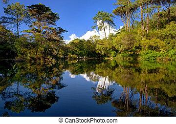 a lagoa de monserrate - lagoa perto do palcio de monserrate...