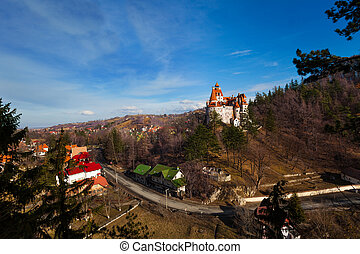 Top view of Bran Castle near village and road - Bran Castle...