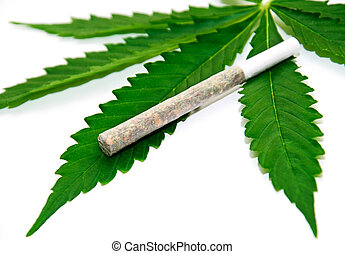 Marijuana joint on leaf - Marijuana joint on fresh green...