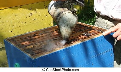 Beekeeper working on beehive with honeycomb. Honey...