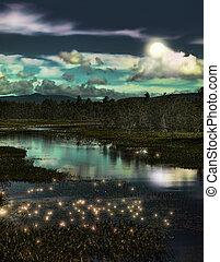 bosque, fireflies