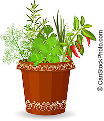 herbs and hot pepper in a flower pot