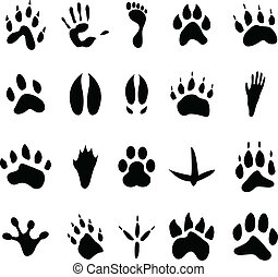 Set of human and animal footprints - Collection of 20 black...
