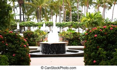 Park with Palms and Fountain.