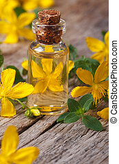 extract from the flowers of St. John's wort macro vertical -...