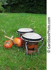 bongos and maracas on grass - Colorful latin rhythm...