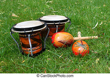 bongos and maracas on grass