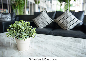 green plant in living room