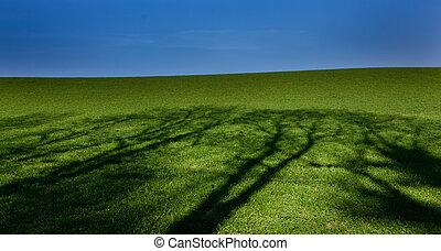 Green landscape blue sky trees