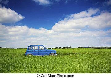Old car - Beautiful old vintage car on a green meadow