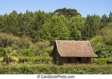 House in Canela - Rio Grande do Sul - Brazil