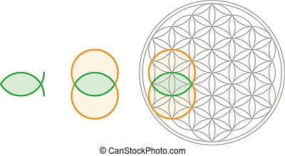 Vesica Piscis in Flower of Life - Vesica Piscis shape can be...