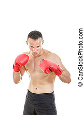 muscular male boxer ready to fight with boxing gloves -...