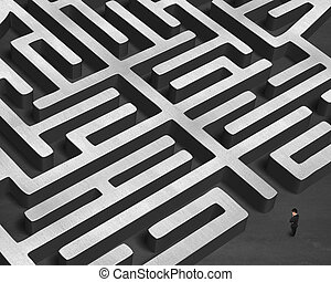 Standing in front of 3D maze