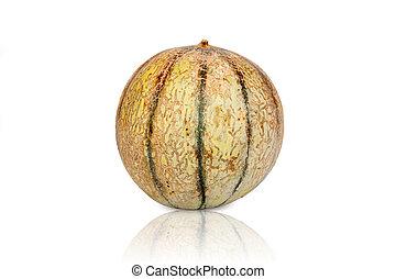 One Galia Melon Cantaloupe