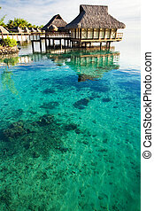 Over water bungalows over amazing coral lagoon - Over water...