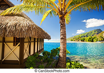 Tropical bungalow and palm tree next to blue lagoon -...