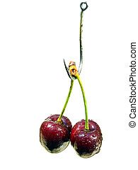 Cherry bait - Cherry on the hook as irresistible bait...