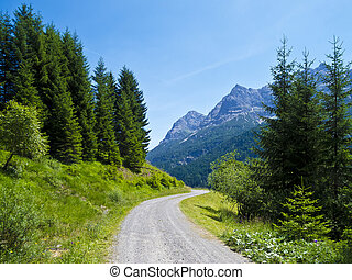 alpine country road - country road somewhere in the...