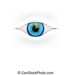 Background with human eye Vector Illustration - White...
