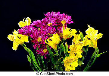 Floral arrangement isolated over a black background