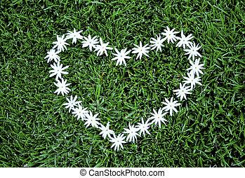 Heart of Jasmine - Jasmine Heart