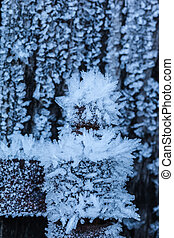 Coldness - macro shot of a wooden fence covered with ice...