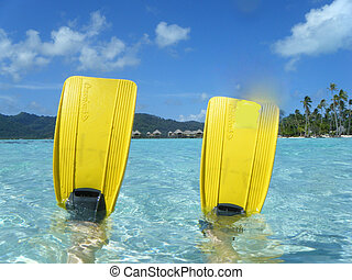 Snorkel Flippers in Tahiti Lagoon - Fun photo of a pair of...