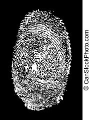 fingerprint - Real finger fingerprint pattern isolated on a...