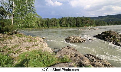 Beautiful summer landscape mountain river Katun Altai Krai...