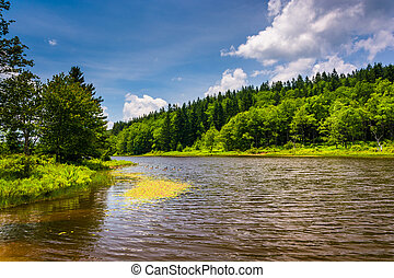 Pendleton Lake, at Blackwater Falls State Park, West...