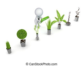 3d rendered decorative plants isolated on white background.