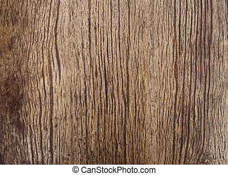 beautiful natural texture of bark wood plank use as nature...