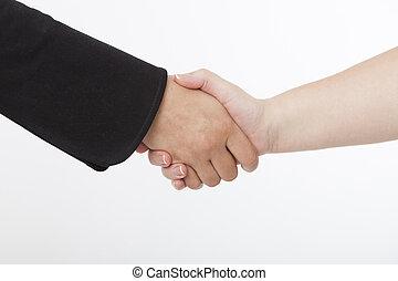 Hand shake -  Hand shake of two business women