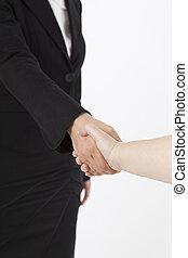 Handshake -  Hand shake of two busniess  women