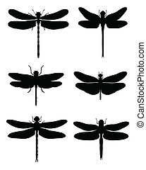 dragonflies - Black silhouettes of dragonflies, vector