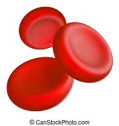 Blood cells - Illustration of human blood cells - isolated...