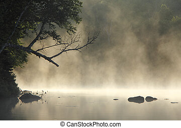 Misty Cove - Early Morning Mist Rising From a Lake Cove -...