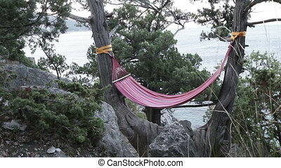 Hammock on the tree - Hanging on a tree hammock by the sea