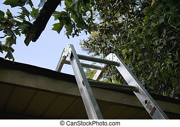 Step Ladder - A step ladder leads up to the roof for...