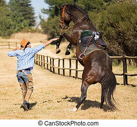 cowboy trying to control his horse