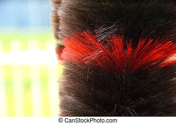 duster - a brown and red feather duster