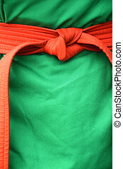 red belt on the green martial costume