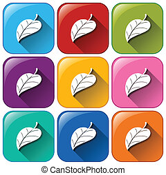 Leaf icons - Illustration of the leaf icons on a white...